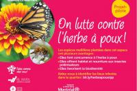 Arrondissement de Rosemont-La Petite-Patrie